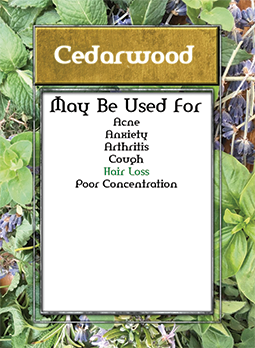 help cedarwood card